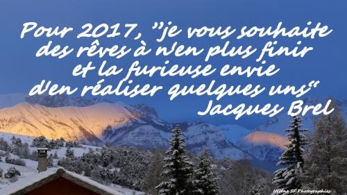 BONNE ANNEE 2017carte-gratuite-bonne-annee-2017-citat.JPG