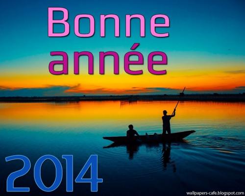 Bonne-Annee-2014-hd (3).jpg