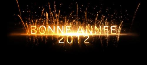 bonne annee 2012.jpg