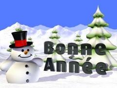 BONNE ANNEE 2009.jpg