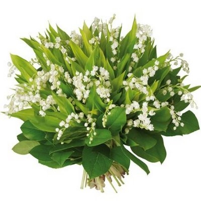 bouquet-de-100-brins-de-muguet.jpg
